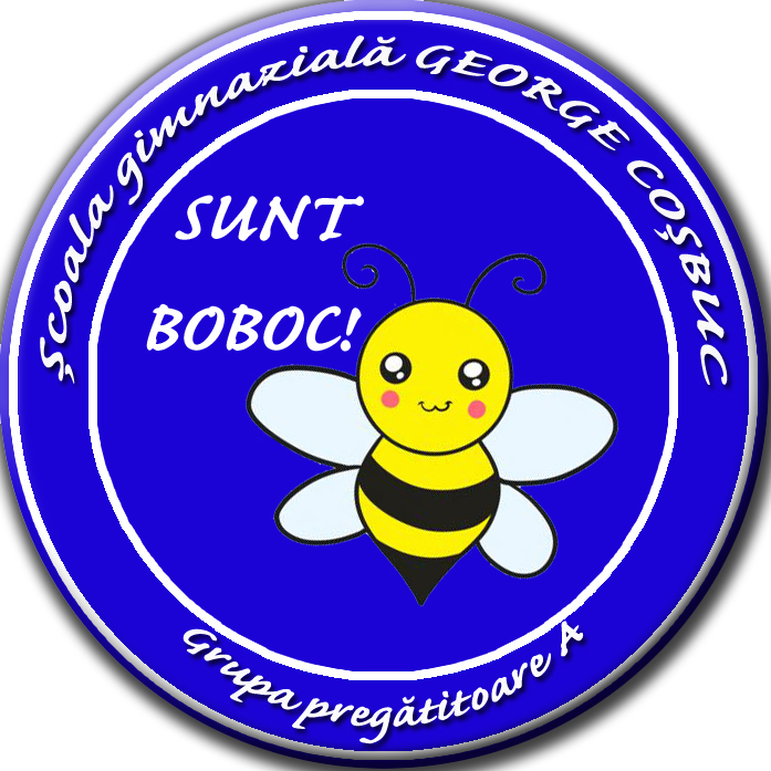 insigna personalizata (4)